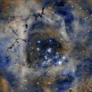 Rosette nebula pseudo SHO,                                Ricardo Tortosa