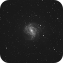 M83 Southern Pinwheel,                                Roland Christen