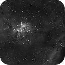 IC1805,                                mreiczyk