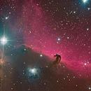 NGC2024 (Tete de cheval) / Orion200mm / Canon 450d Modded / EQ6 / ASI120MC,                                DOFFIN François