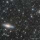 IFN around NGC7331 & Stephan's Quintet,                                Elio - fotodistel...