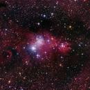 NGC 2264,                                Norbert Reuschl