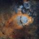 IC 1795 - The Fish Head Nebula,                                Brad