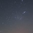 Orion Constellation,                                Lachlan Ellis
