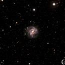Southern Pinwheel Galaxy (M83),                                Mark Forteath