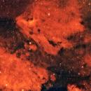 The Pelican and North American Nebula in Ha,                                Van Macatee