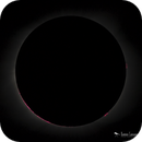 Total Solar Eclipse - Chromosphere and Prominences,                                Damien Cannane