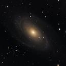 M81,                                Sirio Negri