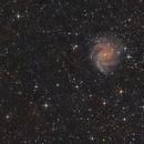 NGC 6946,                                Jürgen Eggenberger