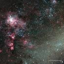 NGC2070, Tarantula Nebula,                                Cory Schmitz