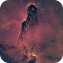 IC1396 The Elephant's Trunk Nebula in HSO,                                Chad Leader