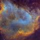 IC 1848 Hubble Palette,                                Eric Coles (coles44)