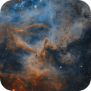 Close up of the Rossette Nebula,                                Ioan Popa