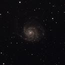 M101,                                Rodriguez.Yves