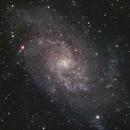 M33,                                Kyle Pickett