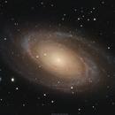 M81 (NGC3031) Bode's Galaxy,                                brad_burgess