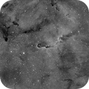Elephant Nebula in Ha,                                David Ford