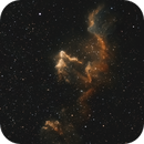 IC63 (renew),                                Goodwin
