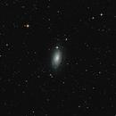 M63 Sunflower Galaxy,                                Martin Wey