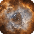 Rosette nebula bicolor (cropped),                                Mikael Wahlberg