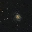 M101,                                MarcoFavuzzi