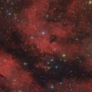 IC1318B/C and LDN889 near Sadr,                                Jenafan