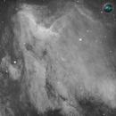 Ionized hydrogen in the pelican nebula,                                Lorenzo Taltavull Menéndez