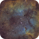 IC1396 (Elephant's Trunk Nebula),                                Serhii