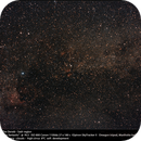 Cygnus: The Deneb - Sadr region,                                Dominique Callant