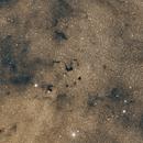 Snake Nebula,                                Tamas Kriska