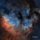 NGC 7822,                                Carl Weber
