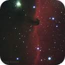 IC434 Horsehead Nebula,                                Craig Bobchin