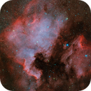 North America Nebula,                                Wei-Hao Wang