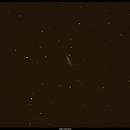 M82,                                Marko
