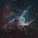 NGC 2359 Thor's Helmet in Canis Major,                                Mark Wetzel