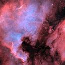 NGC 7000,                                Stefan Schimpf
