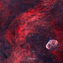 Crescent Nebula,                                Carl Weber