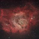 M8 Nebula,                                Gianluca Belgrado