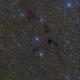 Dark Wolf Nebula,                                Simon