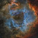 Rosette Nebula (SHO),                                Alan Pham