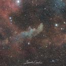 IC2118 Hexenkopfnebel,                                Alexander Grasel
