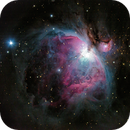 Orion Nebula,                                Sventek