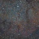Elephant's Trunk Nebula - IC1396,                                Euripides