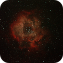 Caldwell 49 - The Rosette Nebula,                                Greg Sleap