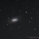 Urban NGC 2903 RGB,                                agostinognasso