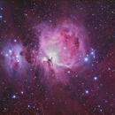 Orion Nebula,                                Don Walters