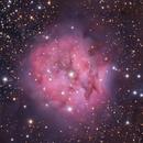 "IC 5146. ""Cocoon"" in Cygnus,                                Vlad Onoprienko"