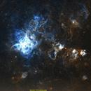 Tarantula Nebula,                                jprejean
