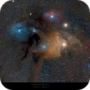 Rho Ophiuchi Nebula Complex in Ophiuchus - It's a beautiful thing!,                                Paul Baker