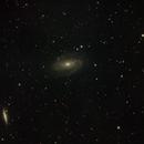 Bode's and Cigar Galaxies,                                Adam Marsden